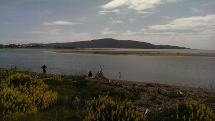 Waikanae River Estuary
